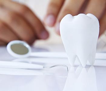 Dr Munira Lokhandwala, Starbrite Dental, Providing Dentistry Service
